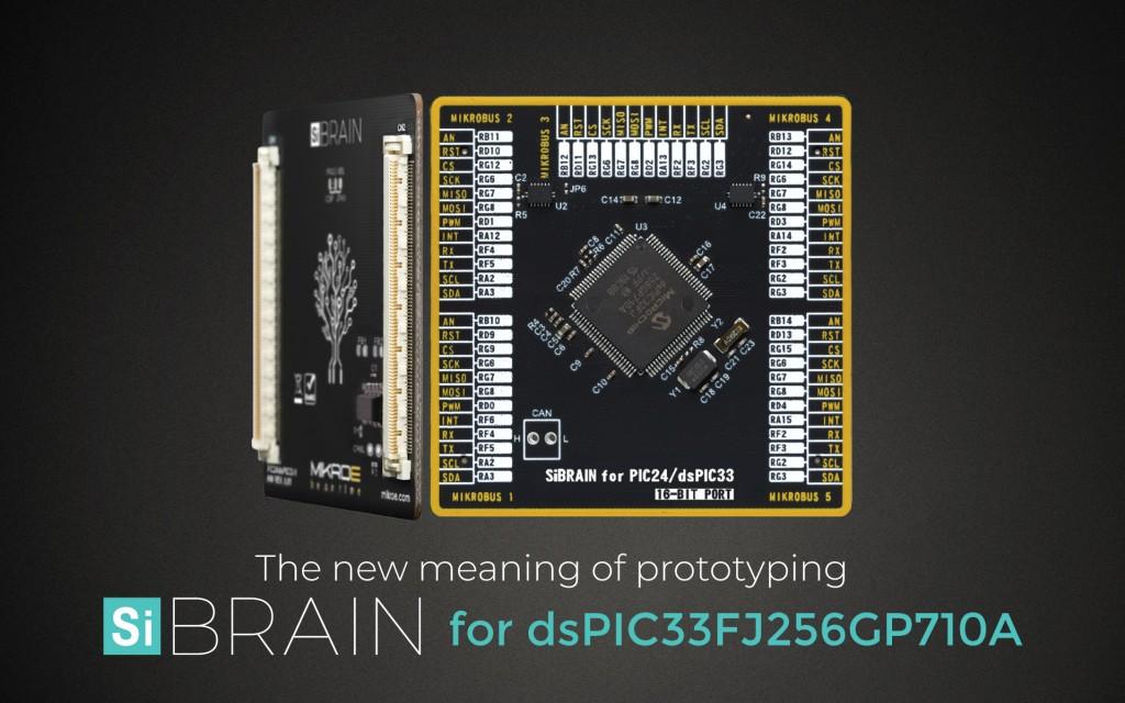 SiBRAIN for dsPIC33FJ256GP710A